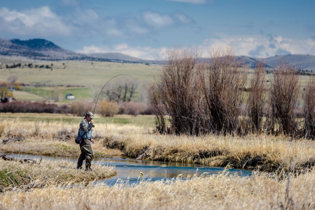 Ruby River Fly Fishing